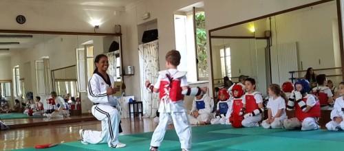 Novità 2015: il Taekwondo arriva a Como!